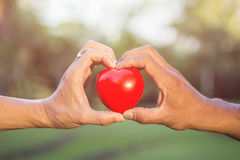 Hand of old man holding red heart in the park with green bokeh Royalty Free Stock Images