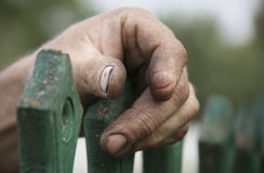 Hand of old man. Hand of old retired man. Shallow depth of field Royalty Free Stock Photo