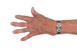 Hand of an old woman Stock Image
