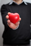 Hand olding a heart Stock Images