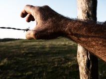 Hand op het prikkeldraad tegen de blauwe hemel Het concept vrijheid en gevangenis stock fotografie