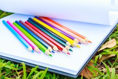Hand open white paper draw and crayon are on the paper.The white paper is on the grass. stock photography