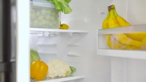 Hand opening fridge with vegetables at kitchen stock video footage