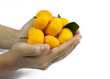 Hand and orange Stock Images