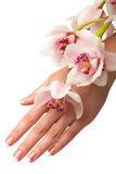 Hand and orchid Royalty Free Stock Images