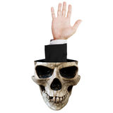 Hand out of skull, isolated on white background Stock Images