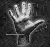 Hand with overall dimensions. Drawing of hand with overall dimensions Royalty Free Stock Image