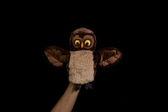 Hand with owl puppet Royalty Free Stock Photos