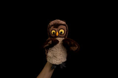 Hand with owl puppet Stock Images