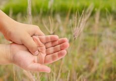 Hand pain with blurred grass background Royalty Free Stock Image