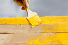 Hand paint. Hand with a paint brush paints wooden surface, close-up Royalty Free Stock Photo