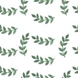 Hand paint watercolor seamless pattern with brunch of leaf. Seamless pattern with green leaf. Watercolor nature pattern Royalty Free Stock Images