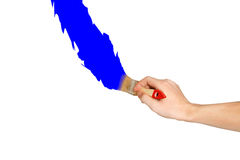 Hand with paintbrush blue line painting. Isolated on white backg Royalty Free Stock Photography