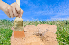 Hand with paintbrush paints sand in green meadow Stock Image