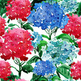 Hand painted backgrounds with hydrangea. Stock Photography