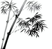 Hand Painted Bamboo Leaves and Branches Royalty Free Stock Photography
