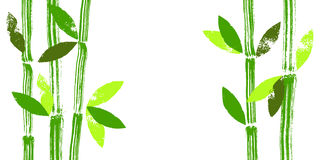 Hand painted bamboo stems and leaves vector background Stock Photography