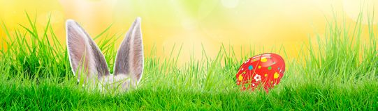 Hand painted Easter egg on grass with bunny. Panorama, banner. Floral, colorful spring patterns and designs. Traditional, artistic stock photos
