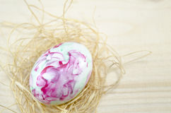 Hand painted Easter egg and straw nest Royalty Free Stock Photo