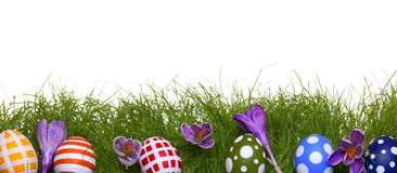 Hand-painted Easter eggs with crocus flowers Royalty Free Stock Image