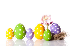 Hand painted Easter eggs and flower Royalty Free Stock Photo