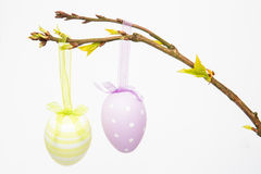 Easter eggs hanging from a branch Stock Photo