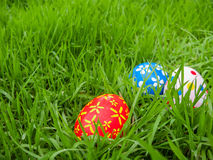 Hand painted Easter eggs hidden on the grass Royalty Free Stock Photography