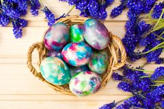 Painted Easter eggs and purple spring flowers royalty free stock photography