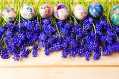 Painted Easter eggs and purple spring flowers royalty free stock image