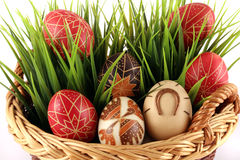 Hand-painted easter eggs Stock Photo