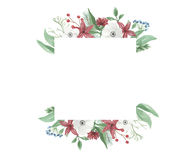 Watercolor Christmas Frame Flower Arrangement Festive Jolly Red Green Hand Painted Holidays Royalty Free Stock Image