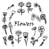 Hand painted flowers Doodle Sketch  illustration Stock Images