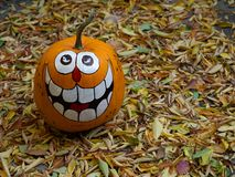 A Hand-Painted Halloween Pumpkin with a Toothy Grin Surrounded. A hand-painted, grinning Halloween pumpkin surrounded by golden dried leaves. Photographed from royalty free stock images