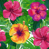 Hand painted hibiscus flower. Watercolor seamless pattern vector illustration