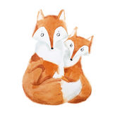 Hand-painted illustration of mother fox and baby sitting together.  Royalty Free Stock Photography