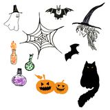 Halloween hand drawn elements set. Black cat, witch, bat, spooky carved pumpkins, potion bottles ghost. Hand painted illustration of spooky cartoon elements set vector illustration