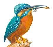 An hand painted illustration on white - Bird, Common kingfisher Stock Image