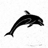 Hand painted jumping Dolphin. In grunge style, can be used as a print on a t-shirt, textile, background, sign for the zoo, aquarium, logo Royalty Free Stock Photography