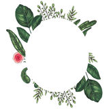 Hand painted with markers floral frame with twig, branch and green abstract leaves Stock Image