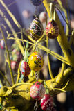 Hand-painted multicolor eggs for easter in european city Stock Photo