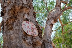 No camping sign on a paper bark tree in Australia stock photos