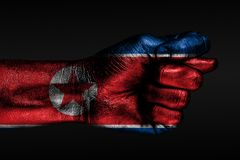 A hand with a painted North Korea flag shows a fig, a sign of aggression, disagreement, a dispute on a dark background. Horizontal frame stock photography