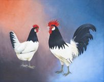 Painting of a rooster and chicken of the same breed against a colored background stock photos