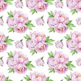 Hand painted peonies pattern Royalty Free Stock Photo