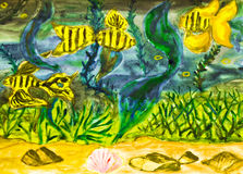 Hand painted picture, golden fishes. Hand painted picture, watercolours, golden fishes and marine plants in water Royalty Free Stock Image