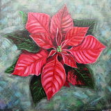 Hand painted poinsettia Stock Photography