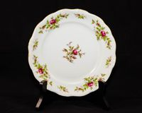 Hand painted rose pattern china dinner plate. A hand painted rose pattern china dinner plate Stock Image