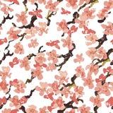 Hand painted  sakura seamless pattern on white background Stock Photos