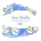Hand painted seashells border. Watercolor decorative summer background. Original hand drawn illustration. Marine design. Tropical shell, starfish texture royalty free illustration