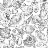 Hand painted seashells pattern. Watercolor vintage ocean background. Original hand drawn illustration. Marine design Stock Photo